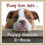 Find out why you need this puppy health handbook