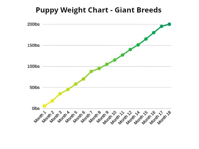 Giant breed puppy weight chart