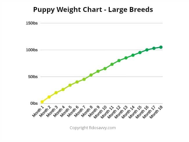 Weight chart for large breed puppies