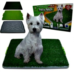 AKC Potty patch indoor dog potty