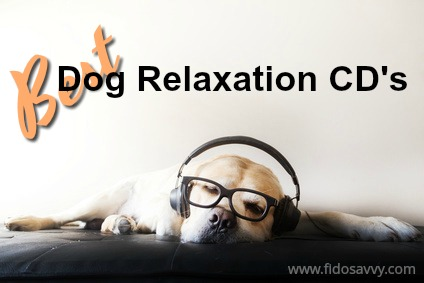 Best dog relaxation CD's for anxious dogs