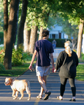 couple walking their dog in the par