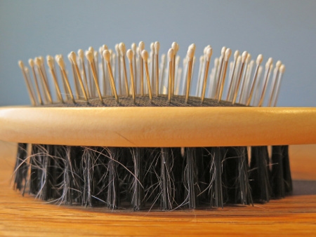 Dog brush used to control shedding