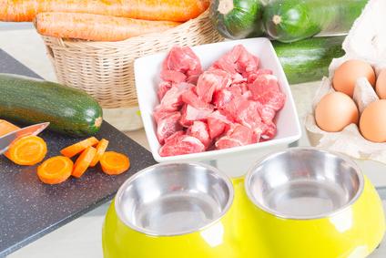 Home made dog food ingredients