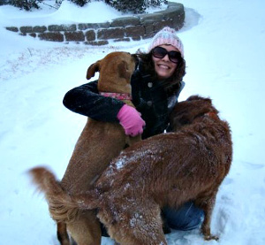 Dogs and their owner having fun in the snow
