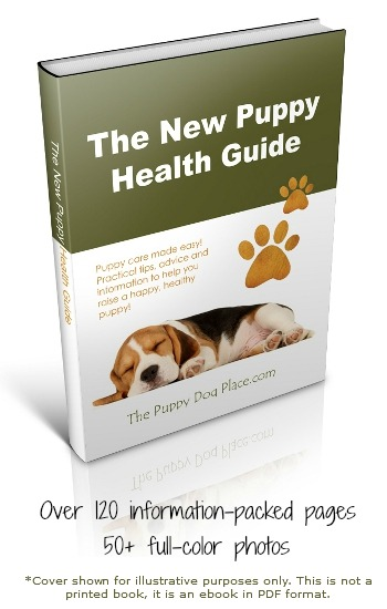 new puppy health guide eboo