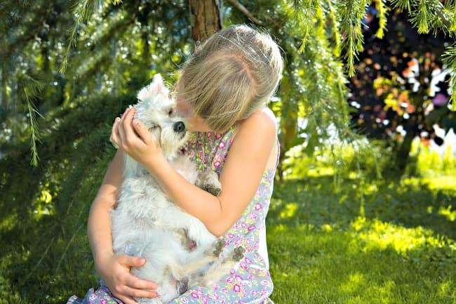 Girl hugging small white dog