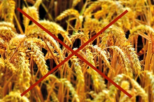 Closeup photo of grain in the field with red X through it to signify grain-free