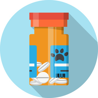 Dog safe human medications in bottle