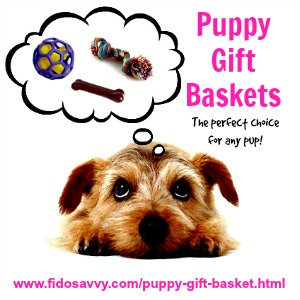 Create the perfect puppy gift basket