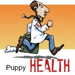 cartoon veterinarian running