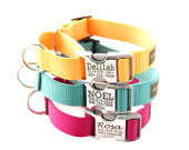 Personalized martingale dog collars