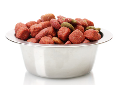 Bowl containing dog food