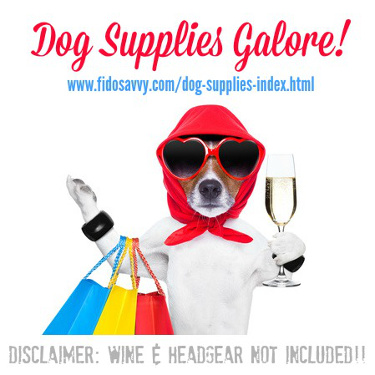 Shopping for dog supplies