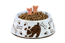 dog food bowl with food and treat