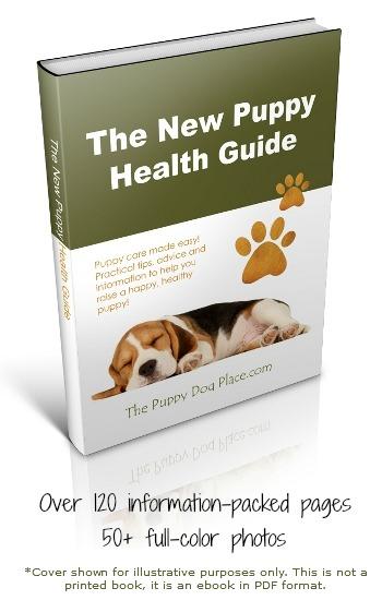 new puppy health guide eboo