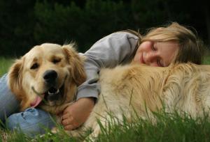 Golden Retriever and little girl