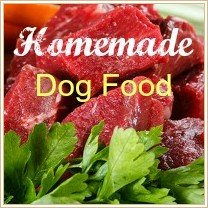 Raw Dog Food Recipe Guidelines