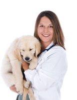 veterinarian with golden retriever puppy
