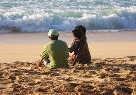 Man with his faithful dog at the beach