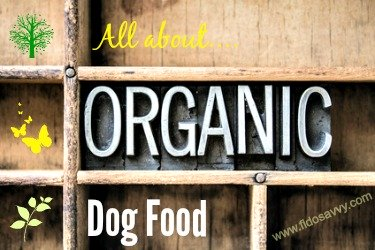 About Organic Dog Food