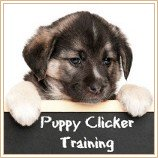 How & why clicker training works