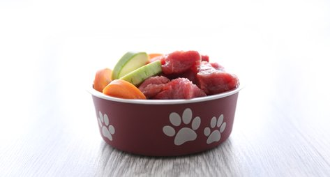 Healthy puppy food ingredients